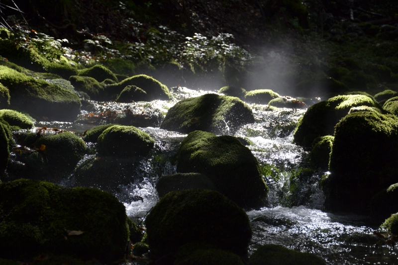 Megleni potok