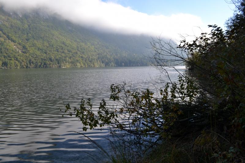 Jezero #5